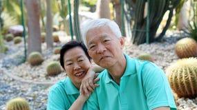 Asian senior couple in Cactus botanic garden Stock Image