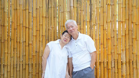 Asian senior couple with golden bamboo background and copy space Royalty Free Stock Image