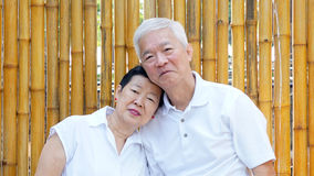Asian senior couple with golden bamboo background and copy space Stock Photo
