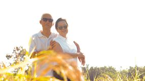 Asian senior couple happy at organic rice filed business stock images