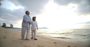 Asian senior couple walking and talking on beautiful tropical beach. stock footage