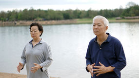 Asian Senior Elderly couple Practice Taichi, Qi Gong exercise ne Stock Photography