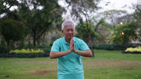 Asian Senior Elderly Practice Taichi, Qi Gong exercise outdoor Royalty Free Stock Photography