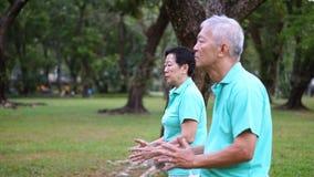 Asian Senior Elderly Practice Taichi, Qi Gong exercise outdoor Royalty Free Stock Photo