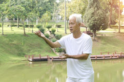 Asian senior tai chi. Outdoor stock image