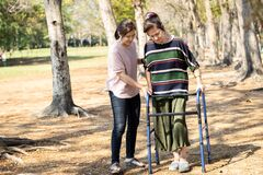 Free Asian Senior Woman Use Walking Aid During Rehabilitation After Knee Surgery, Young Carer Assisting Reassuring Mature Elderly Royalty Free Stock Photography - 169186497