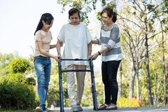 Asian senior woman use walking aid during rehabilitation after physical therapy or knee surgery, elderly people practice walking,