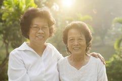 Asian seniors family portrait Royalty Free Stock Image