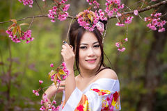 Asian sexy woman wearing traditional Japanese kimono. And Wild Himalayan Cherry Or Cherry blossom Royalty Free Stock Photos