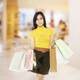 Asian Shopping Woman Stock Photography