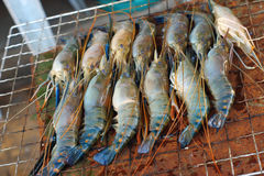 Asian shrimp barbecue Stock Photos