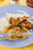 Asian skewed chicken with rice and baby corn. Asian spicy  chicken meat on skewer with rice and baby corn Royalty Free Stock Photos