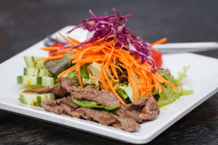 Asian Sliced Beef Salad with red cabbage and Carrots Royalty Free Stock Images