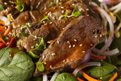 Asian Sliced Beef Salad Stock Images