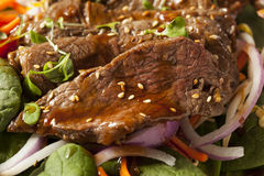Asian Sliced Beef Salad Royalty Free Stock Image