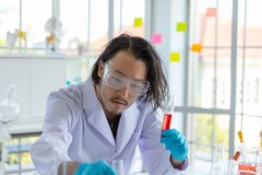 The Asian smart man scientist is testing test tube royalty free stock images