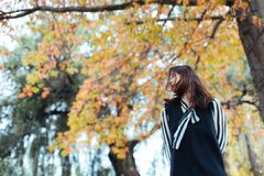 Asian female in autumn nature with black  dressing. Asian smile woman standing under yellow trees in the park Royalty Free Stock Image