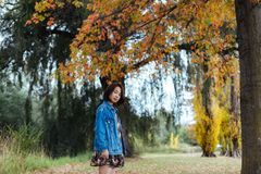 Asian female in autumn nature with jeans jacket. Asian smile woman standing under yellow trees in the park, looking at camera Stock Image