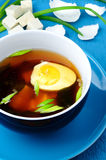 Asian soup with egg onion ant tofu cheese Stock Photos