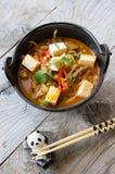 Asian soup with tofu Royalty Free Stock Photos