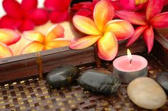 Asian Spa. Aromatic candle and tropical red frangipanis Royalty Free Stock Photo
