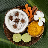 Asian spa setting with coconut, turmeric, lime, cinnamon, anise Royalty Free Stock Photos