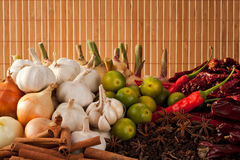 Asian Spice. Combination of Asian Spice and Curry Ingredients Royalty Free Stock Photos