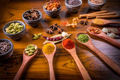 Asian spices of assorted flavors Stock Photography