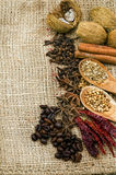 Asian spices on a burlap canvas. A variety of asian spices on a burlap canvas Royalty Free Stock Images