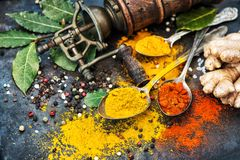 Asian spices dark table background Curry turmeric ginger bay lea Stock Images