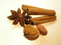 Asian spices and flavors. Pictured is star anise (  Illicium verum), cinnamon bark sticks ( Cinnamomum verum), chestnut ( Castanea spp. Fagaceae), peanut ( Royalty Free Stock Images