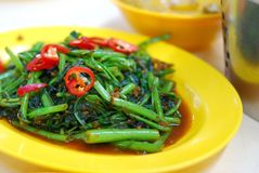 Asian spicy vegetables. Asian kangkong vegetables cooked with spicy sambal chili sauce. Also known as Ipomoea Aquatica or water spinach. Suitable for food and Stock Photos
