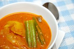 Asian spicy vegetarian curry Royalty Free Stock Image