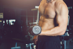 Asian sportsman raise dumbbell with muscular building at gym. stock photography