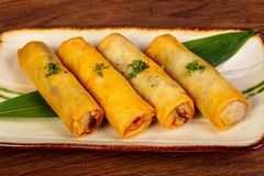 Asian spring roll. With seafood stock image