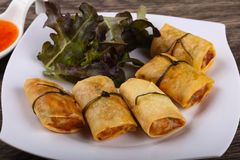 Asian spring roll. Traditional Asian spring roll with shrimps and vegetables royalty free stock image