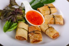 Asian spring roll. Traditional Asian spring roll with shrimps and vegetables royalty free stock photos