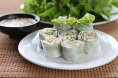 Asian spring rolls, bean sprouts, peanut sauce. Fresh spring rolls with vegetable Stock Image