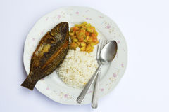 Asian Staple. A meal consisting of fish and rice, perhaps, with tomatoes as sidings Royalty Free Stock Images