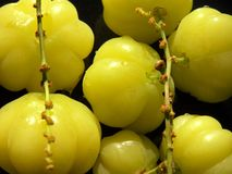Asian Star gooseberry Royalty Free Stock Photography