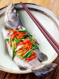 Asian steamed fish. Delicious asian steamed sea bass Royalty Free Stock Photos