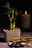 Asian Still Life. Bamboo, polished stones and a candle Royalty Free Stock Images