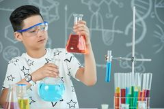 Asian Student at Chemistry Classroom. Concentrated Asian student wearing protective goggles holding flasks with liquids in hands while conducting experiment in Royalty Free Stock Photo