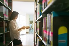 Asian student reading a book in the library. royalty free stock images