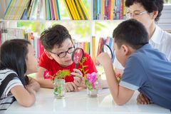 Student watching leave and flower thru magsifying glass Royalty Free Stock Photos
