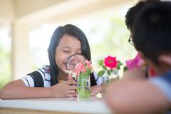 Asian Students and teach study biology scicence in outdoor classroom. Asian Students and teach study biology scicence in the outdoor classroom Royalty Free Stock Images