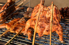 Asian-style charcoal grilled chicken. Juicy grilled BBQ chicken on the grill cooked with Asain style Stock Photos