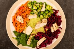 Asian Style Chargrilled Chicken Salad With Red Cabbage Carrots E. Damame Beans and Hummus Against A Black Tiled Background Royalty Free Stock Images