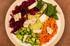 Asian Style Chargrilled Chicken Salad With Red Cabbage Carrots E. Damame Beans and Hummus Against A Red Tiled Background Royalty Free Stock Images
