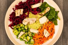 Asian Style Chargrilled Chicken Salad With Red Cabbage Carrots E. Damame Beans and Hummus Against A Dark Wooden Background Royalty Free Stock Image